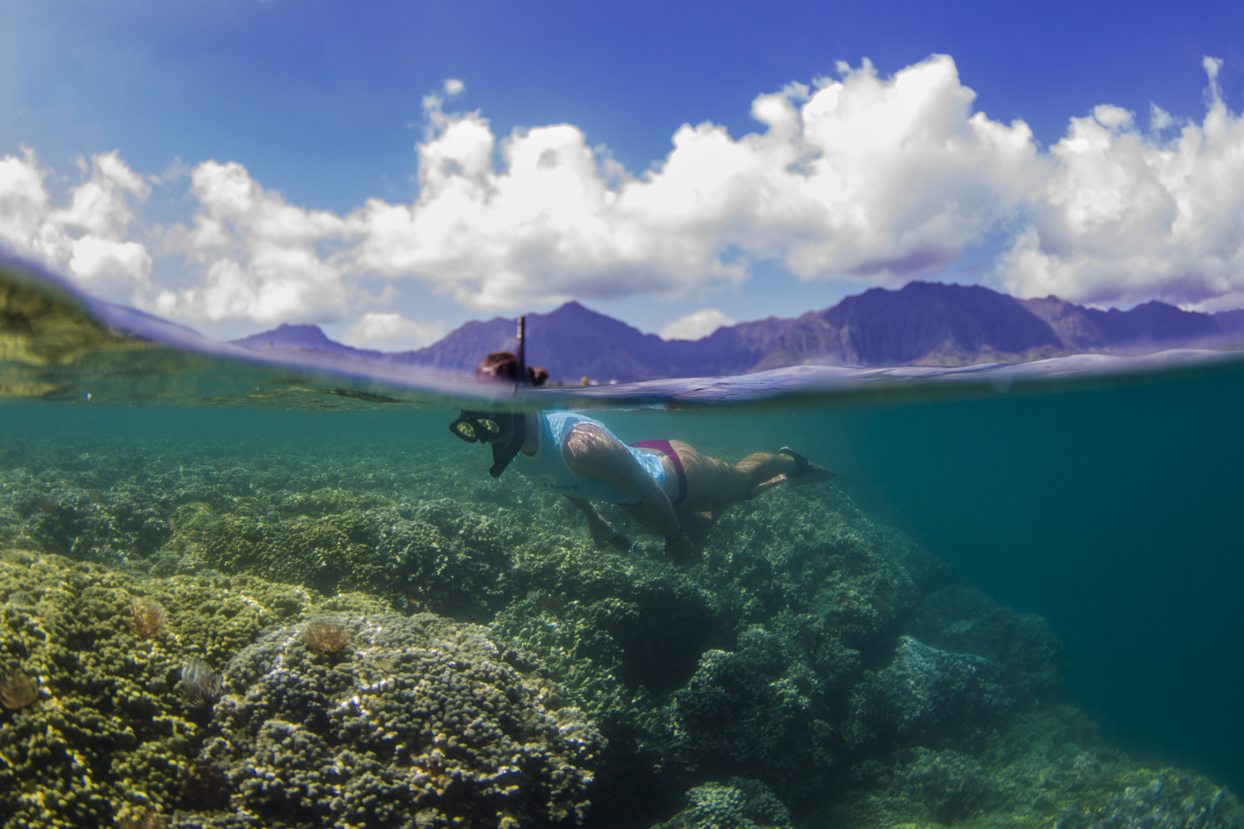 Kaneohe Bay Kayak And Snorkel Tour To Coconut Island